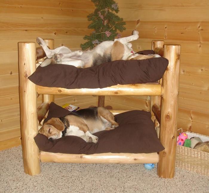 modelos-de-camas-para-cachorro-beliche-sem-escada
