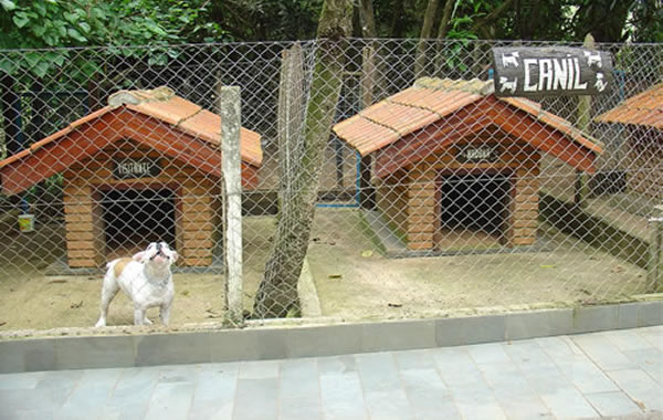 canil-para-cachorro-cão