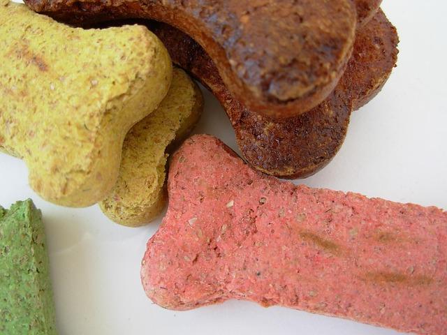 São muitas opções de biscoitos que você poderá fazer para seu animal!