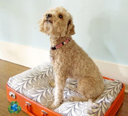 modelos-de-camas-para-cachorro-mala-usada