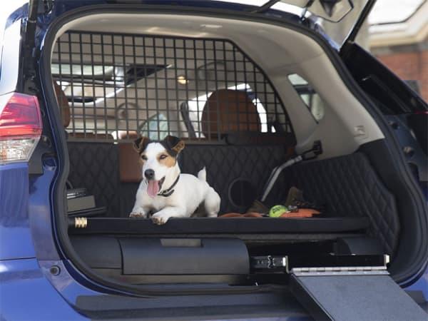 grade divisoria para cachorro no carro