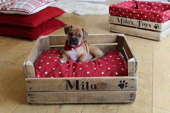 como fazer cama para cachorro