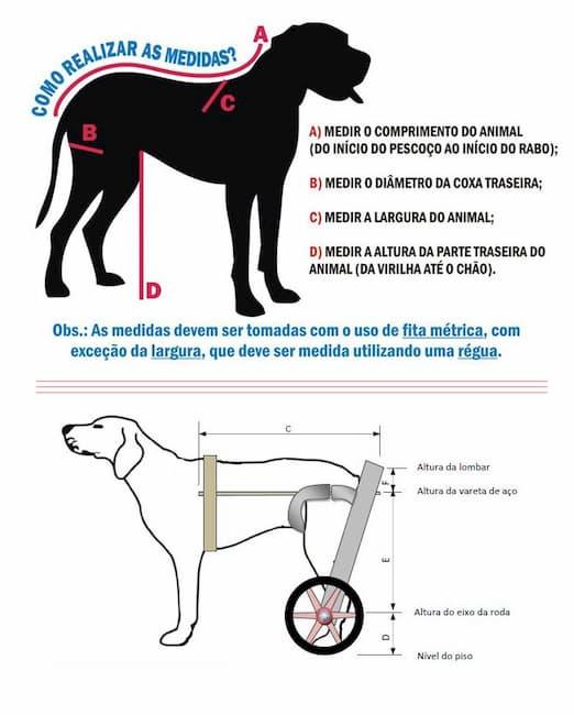 medida cadeira de rodas para cachorro